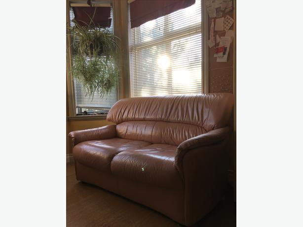 Salmon-coloured couch (priced to move)