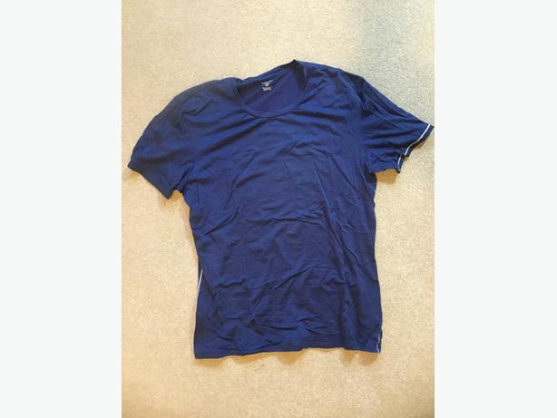 Icebreaker 'Beast' T-shirt (Men's XL)