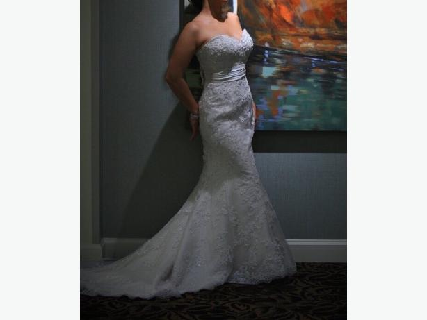 Beautiful Lace Wedding Dress - dry cleaned & boxed air tight