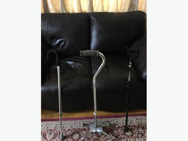 All 3 Canes for Sale for $23 / Near Fairview Mall