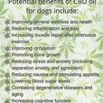 CBD Oil For Health and Wellness