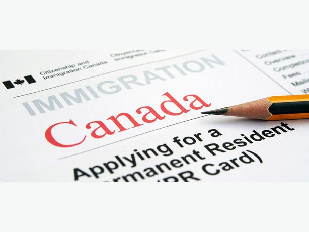 """Top Rated Immigration Services"""