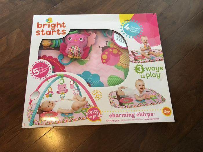 Pretty in Pink Bright Starts Charming Chirps Activity Gym