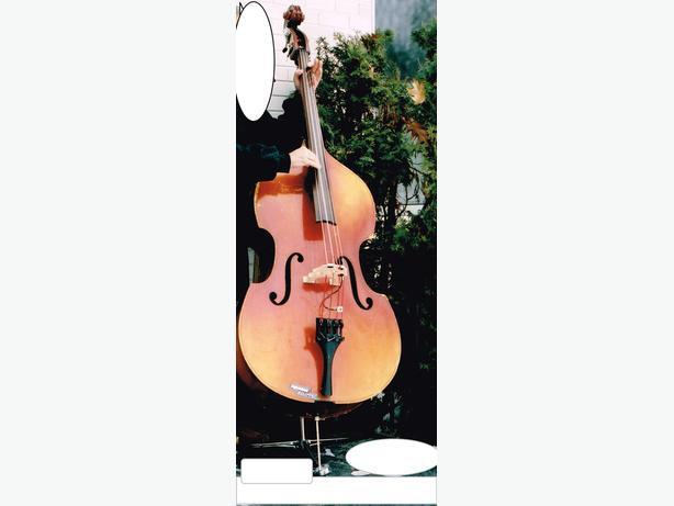 Czech-Made Upright Bass Available