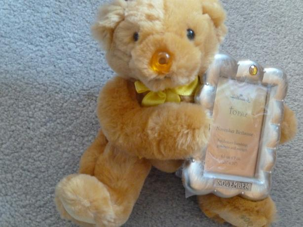 teddy bear with picture frame November Birthstone Bear