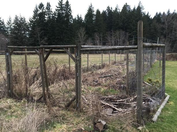 FREE:  dismantle older garden