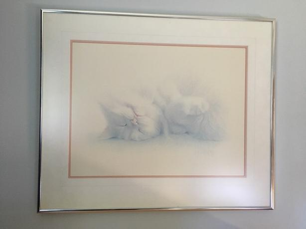 Cat snoozing Framed Print