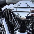 2000 Harley-Davidson® FLSTFI