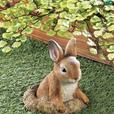 Cute Bunny Rabbit Statue Figurine Yard Decor 5 Lot 4+Choice Brand New