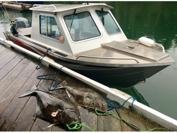 FOR TRADE: Fishing for Handyman Work