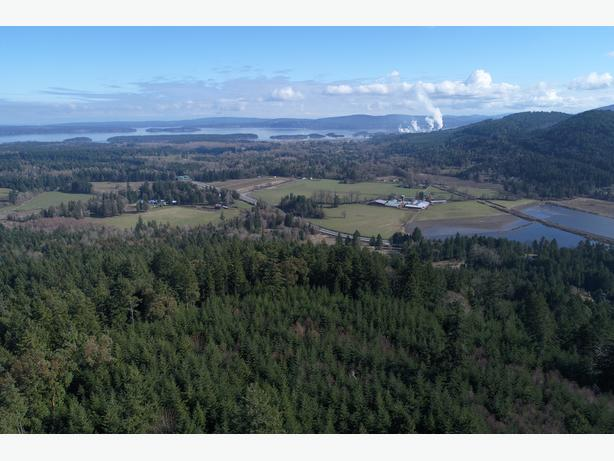 20 Hidden Hills Rd - 37 Acres only 5 minutes North of Duncan