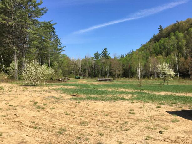 2.7 acre land for sale ready to build your dream cabin .