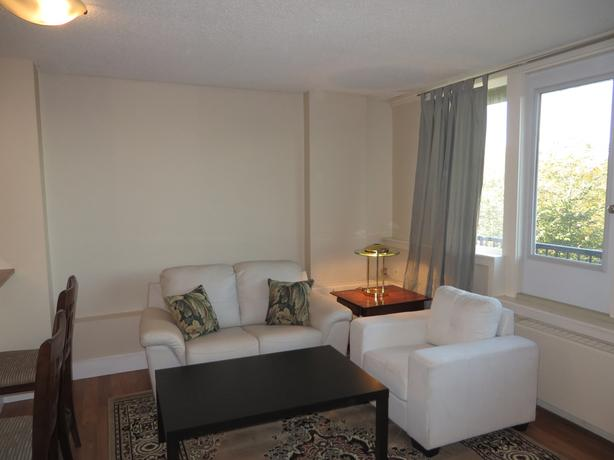 Central Fully Furnished 1 Bedroom Condo For REnt