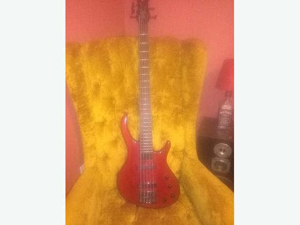 bass guitar five string