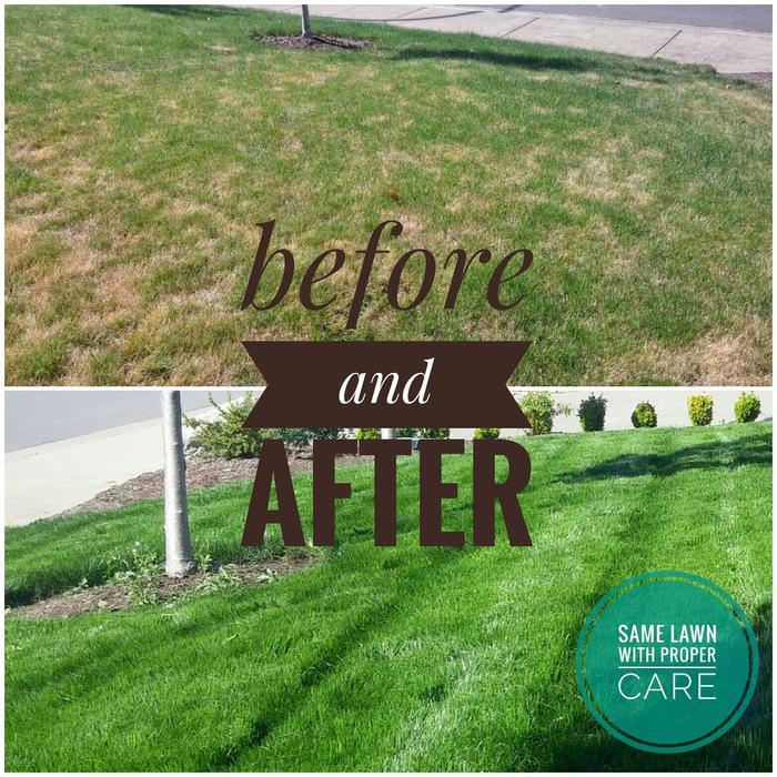 Garden Landscaping In Halifax Huddersfield West: Lawn Care And Gardening As It