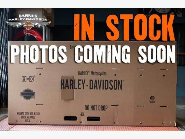 2007 Harley-Davidson® FLHTCU