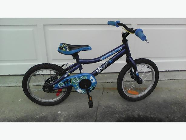 boys 15inch Miele bike