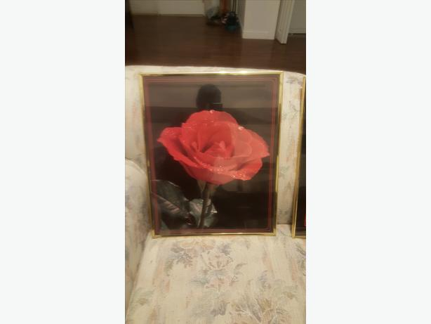 2  framed-pictures-of-flowers