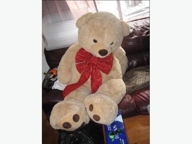 huge Teddy bear-never used