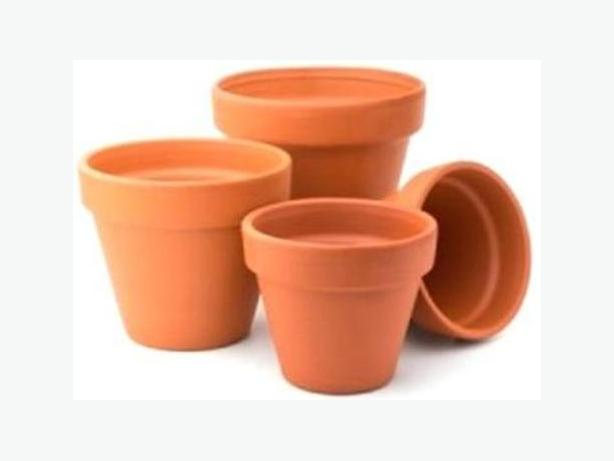 Terracotta Plant Pots - Wanted for Free