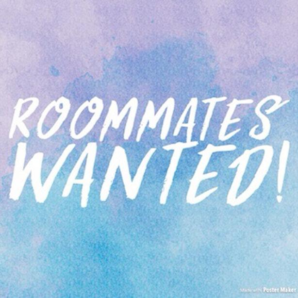 Roommates wanted!