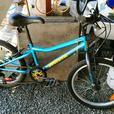 Miele Boys bike