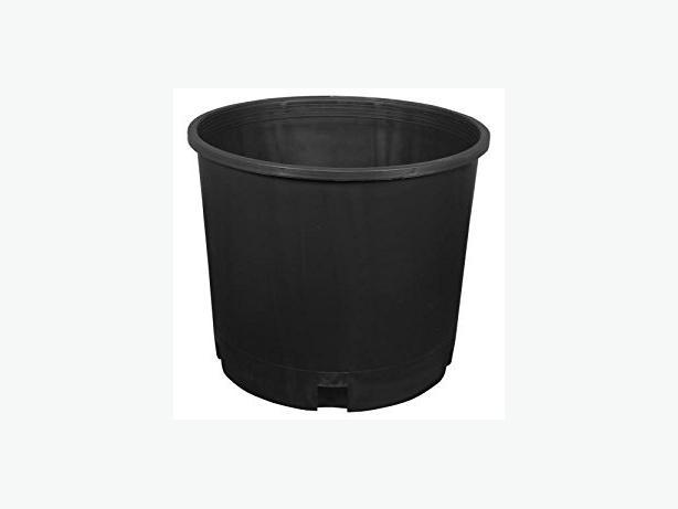 5 gallon pots