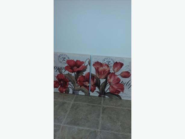 REDUCED!  POPPIES AND TULIPS SET OF 2 PICTURES