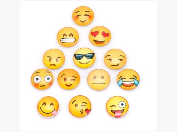 13 Piece New Emoji Fridge Magnet Set - $12