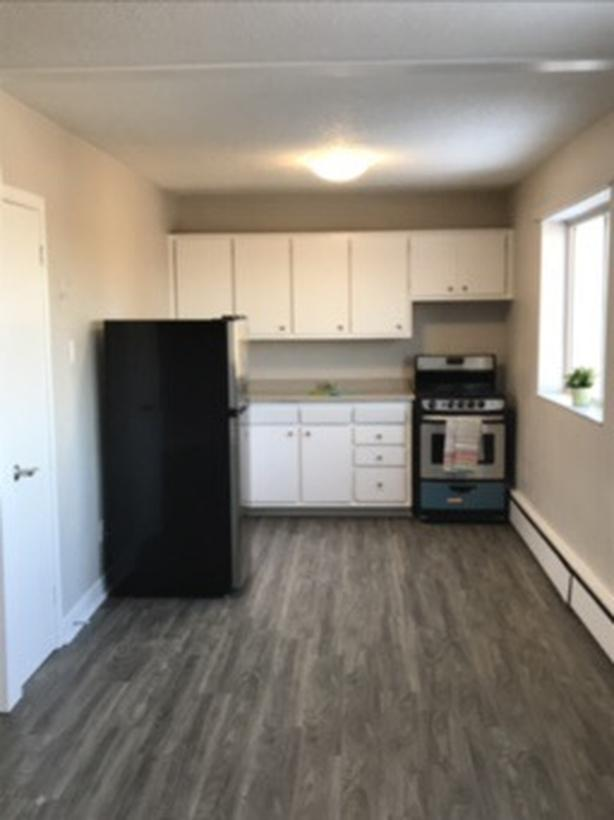 Newly Renovated - Pet friendly - 1 bedroom apartment