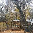Seasonal Campsite For Sale Katepwa Beach