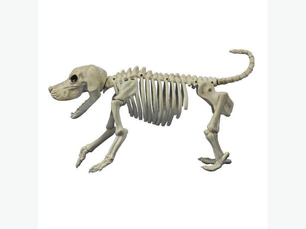 Dog Skeleton Prop Decoration - NEW w/tag