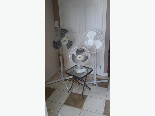 3 Fans - 2 Standing/1Tabletop