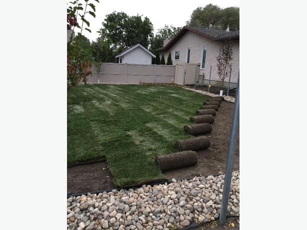 Sod and underground sprinkler installation