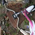 ***REDUCED*** Beautiful Bella Cruiser by Giant