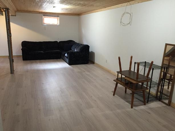 Large Basement Suite near University