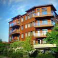 Beautiful penthouse condo