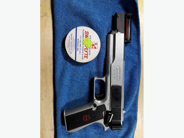 Target air gun