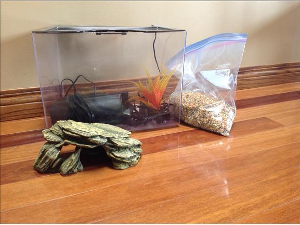 3G Fish tank