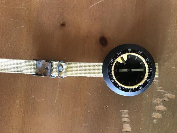 Wrist mounted compass