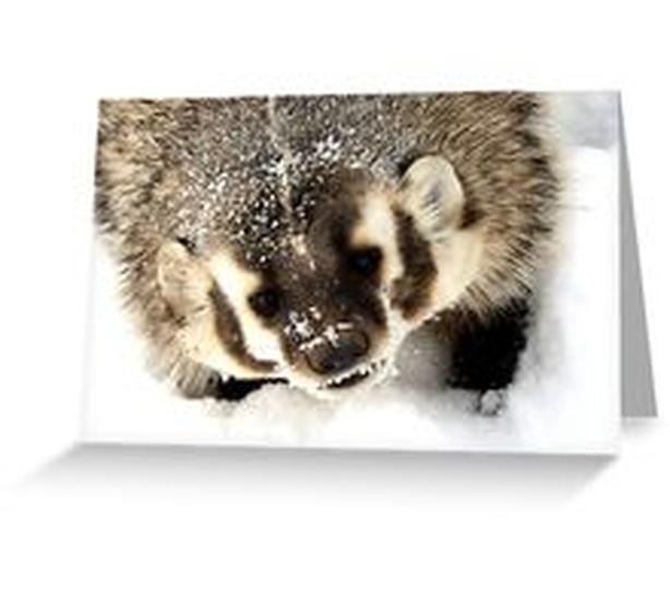 BADGER available on over 50 gift items, for all ages!