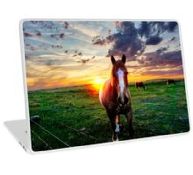 Beautiful big work horse with companions, photo on gift items, see below!