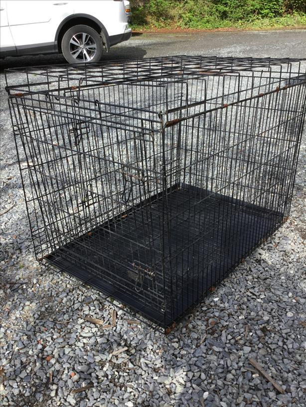 Large dog 2 doors crate