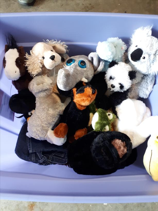 Large tub of stuffies.. webkins mostly