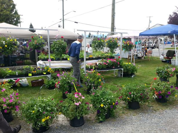 THREE SISTERS FARM AT SOOKE COUNTRY MARKET THIS SATURDAY
