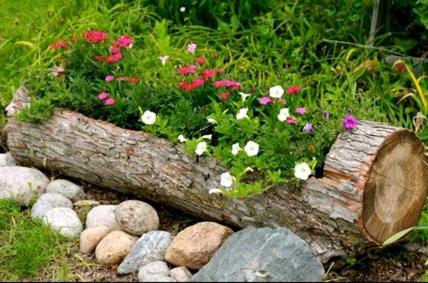 WANTED: hollow log for Garden project