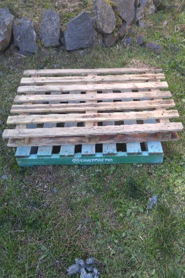 FREE: pallets