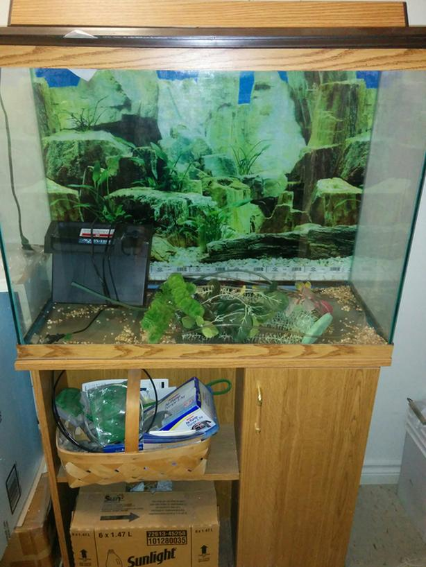 27-Gallon Aquarium For Quick Sale