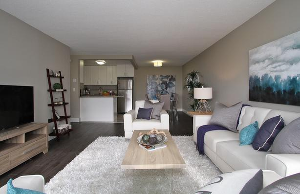 Burnaby Spring Special! Pet Friendly 2BR close to transit+ 6m FREE Parking!