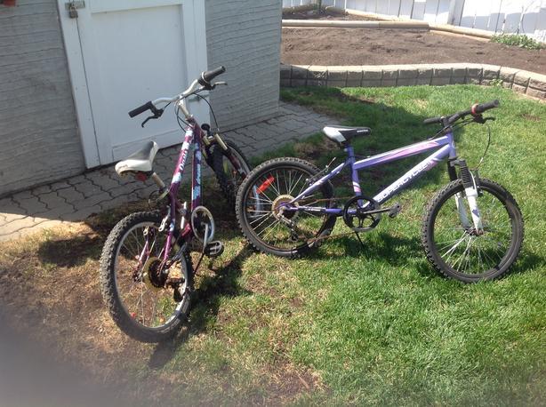 2 girls 20 inch, 5 speed mountain bikes
